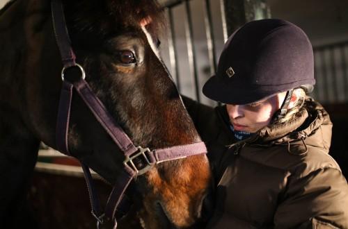Å erfare hestelivet