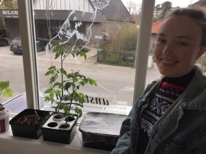 Guro Hollund har tatt over kantinen med plantene sine