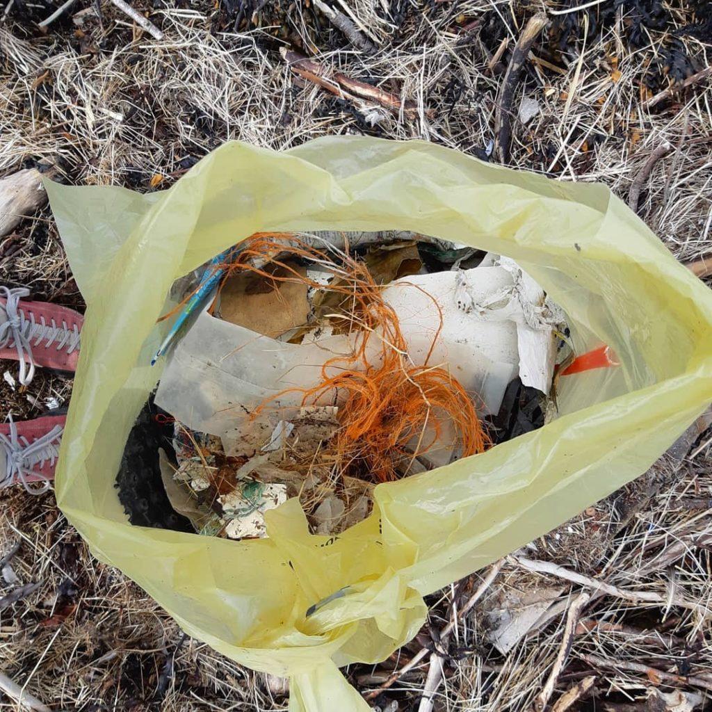 søppel strandrydding #nrkplast Verdal Bakketun folkehøgskole