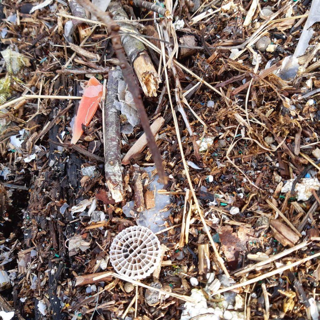 avfall søppel plast strandrydding Verdal Bakketun folkehøgskole