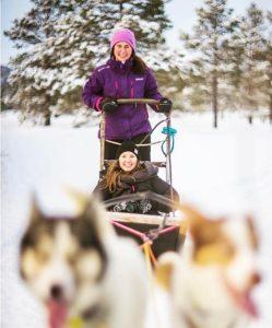I Nord-Norge kan man opleve nordlys, dyb sne og hundekørsel