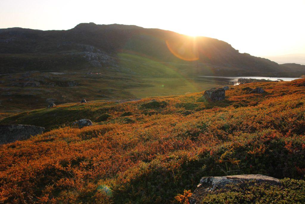morgenstemning sol lyng høst Pasvik folkehøgskole