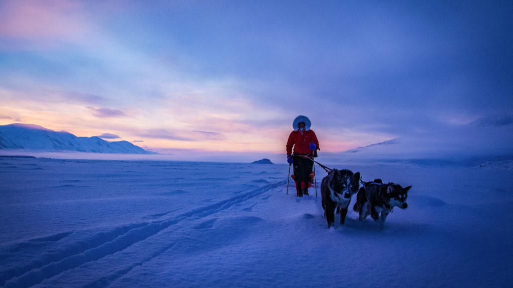 Hunder friluftsliv Svalbard folkehøgskole