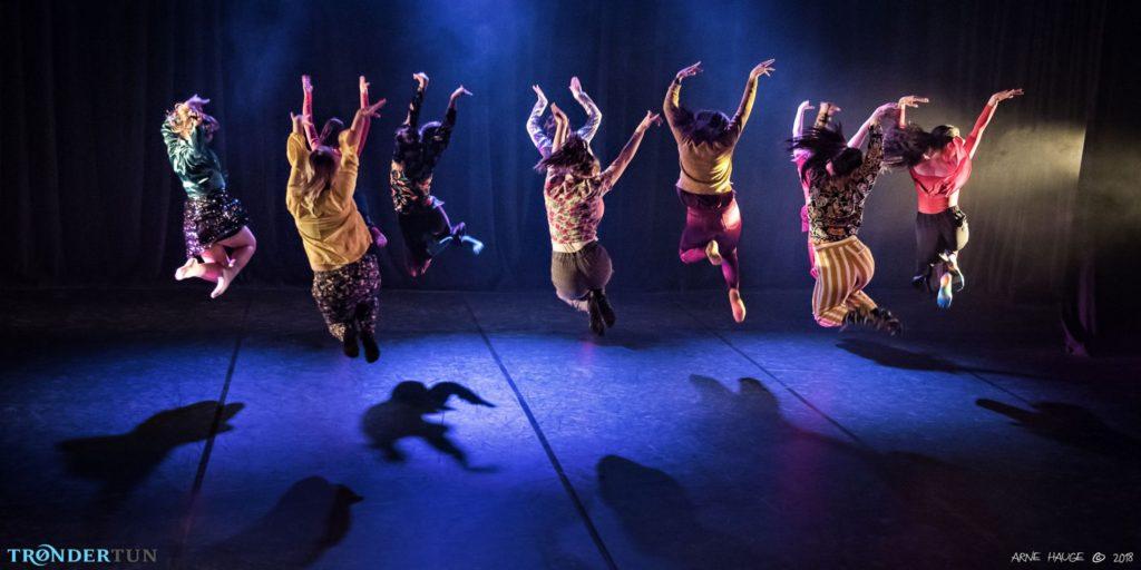 folkehogskole dans