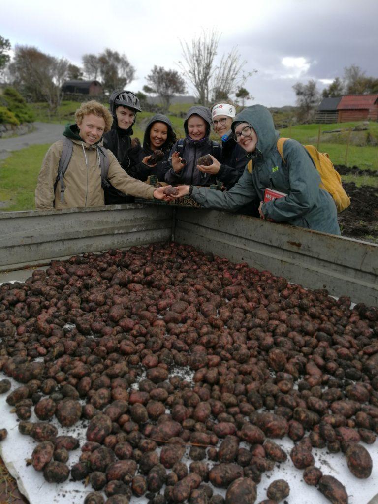 elever Bømlo folkehøgskule tilhenger med poteter