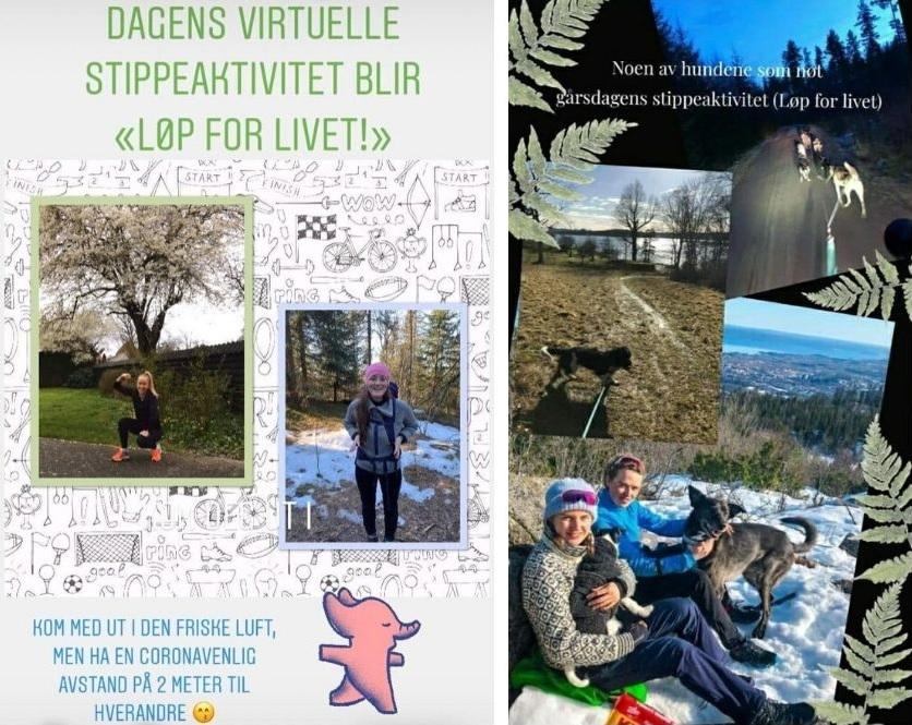 skjermbilde instagram story oppgaver fra stipendiatene turbilder