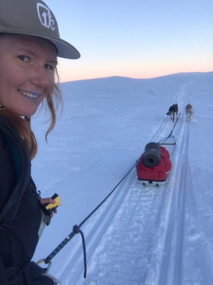 Lærer står på ski med slede og hunder på fjellet