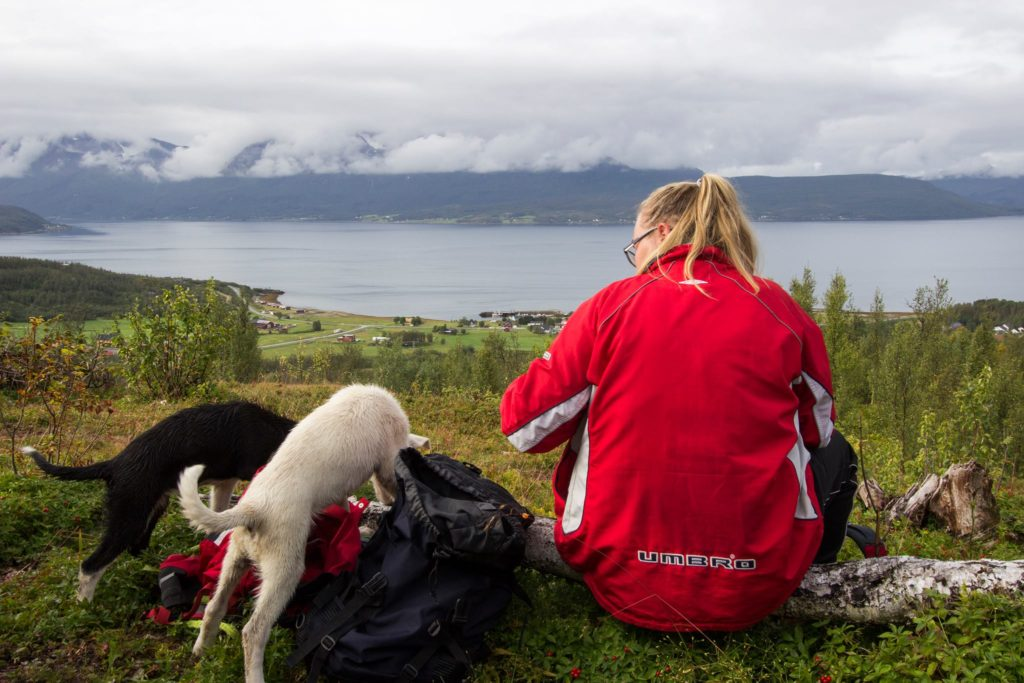 Hilde-Kristin og to hunder, utsikt fra fjelltopp