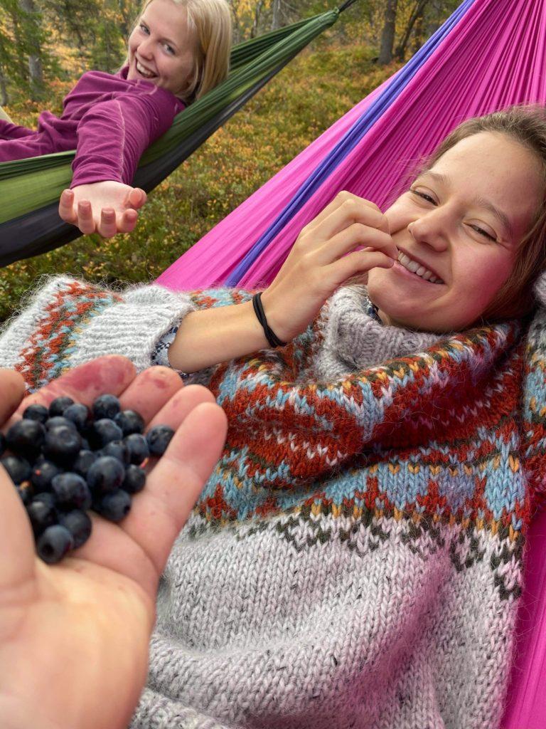 hengekøye, blåbær, Vefsn folkehøgskole