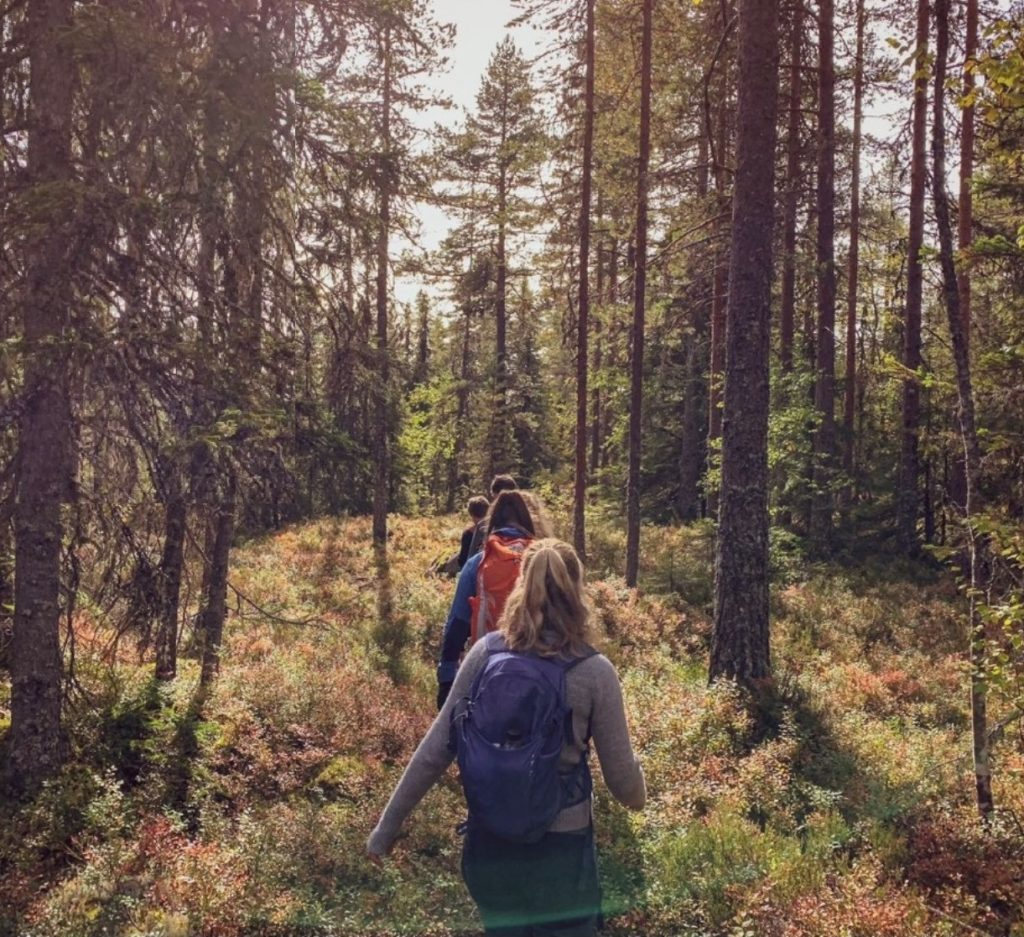 skogstur, elever, Ringerike folkehøgskole